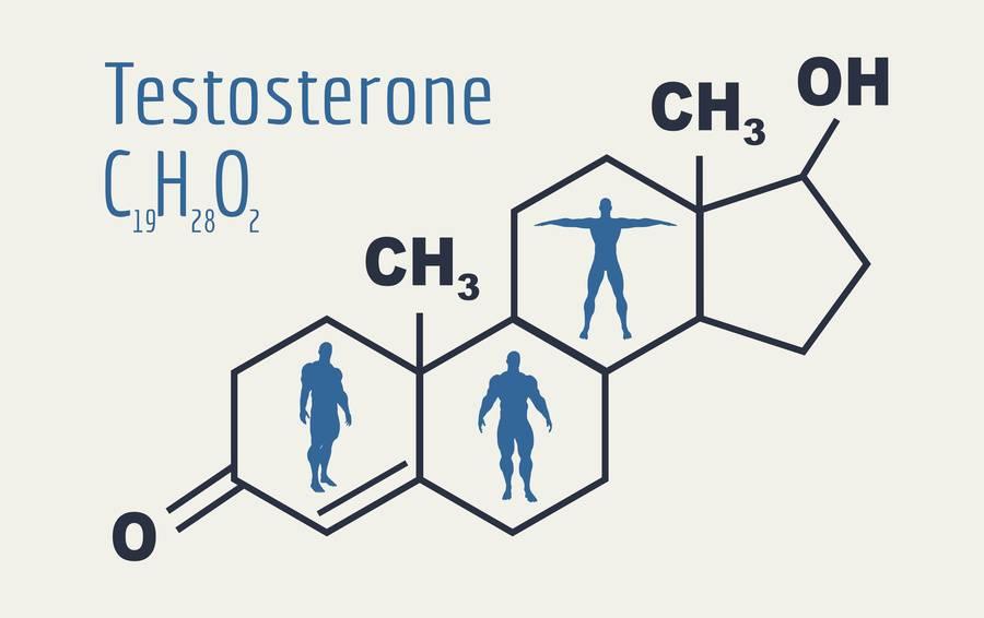 Как проявляется повышенный дигидротестостерон у женщин и как нормализовать показатели биоактивной формы тестостерона
