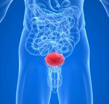 Эпидидимит – острый и хронический. причины, симптомы, диагностика и лечение заболевания.