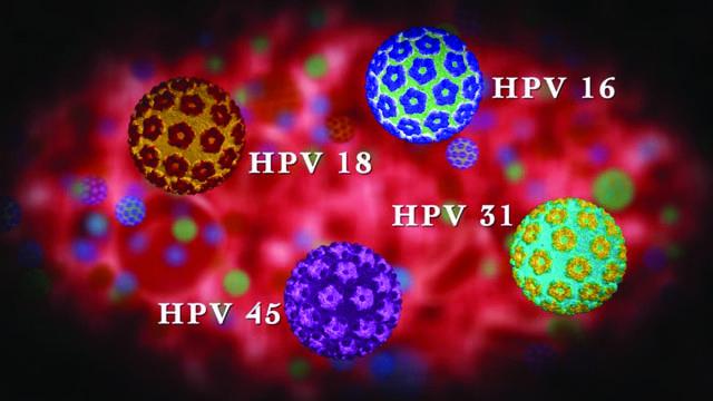 Характеристики и описание видов и типов вируса папилломы