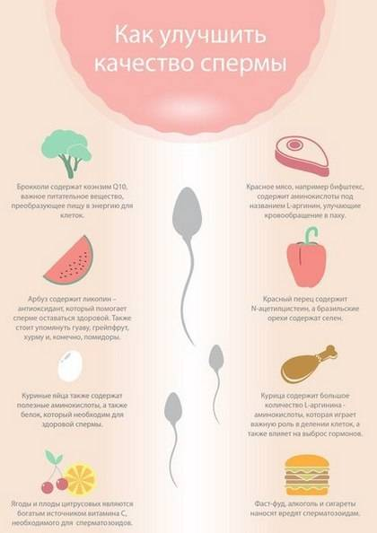Как улучшить качество спермы в домашних условиях