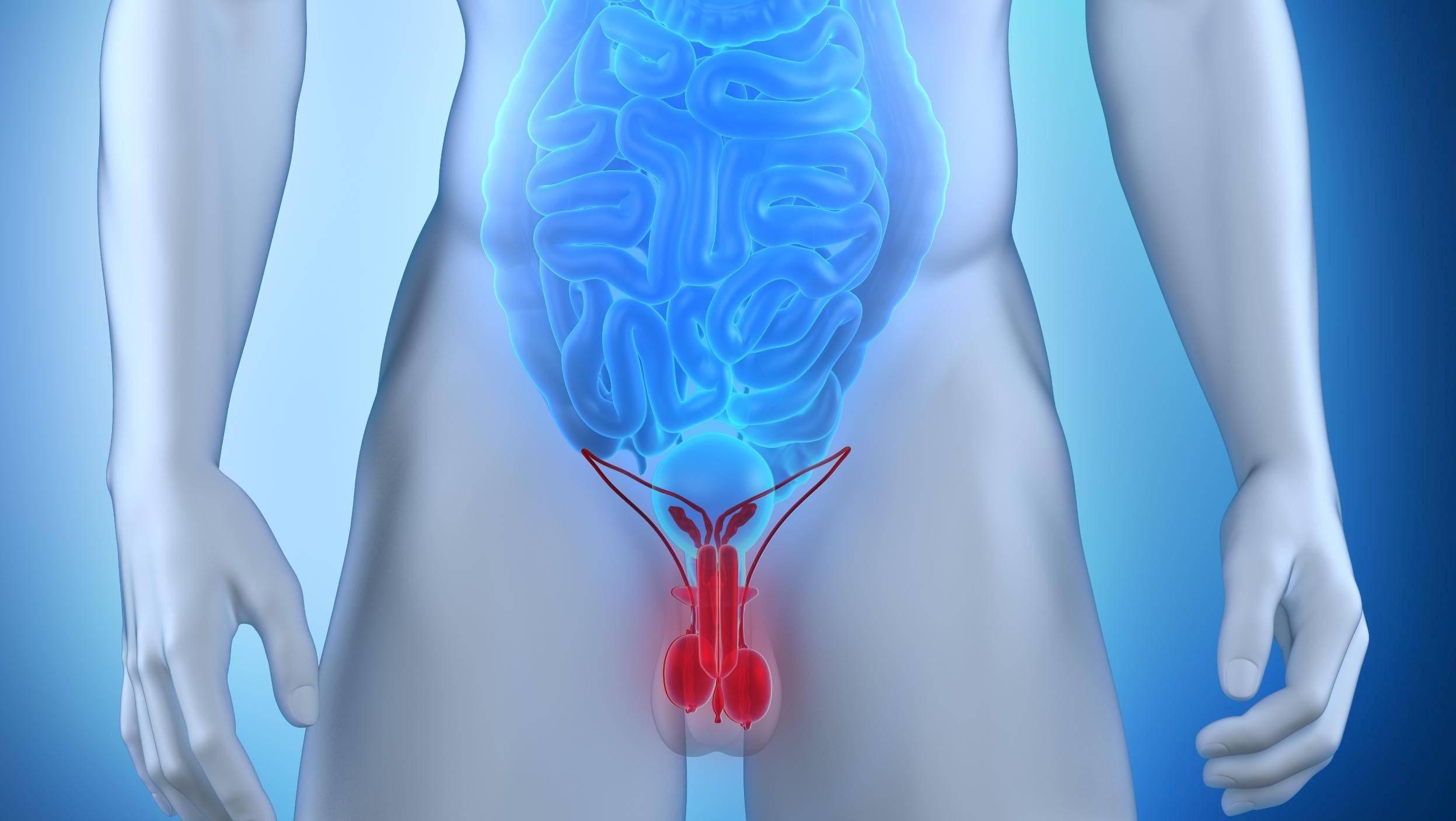По какой причине возникает острый эпидидимит