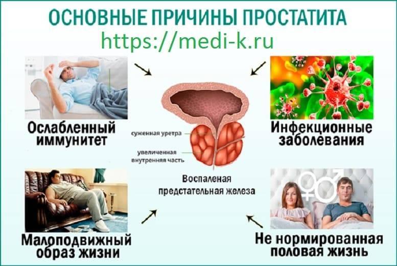 Предстательная железа у мужчин — что это такое, фото и как выглядит