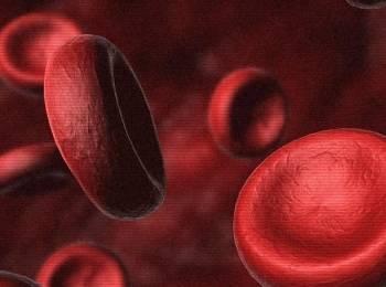 Влияние фолиевой кислоты на мужское здоровье