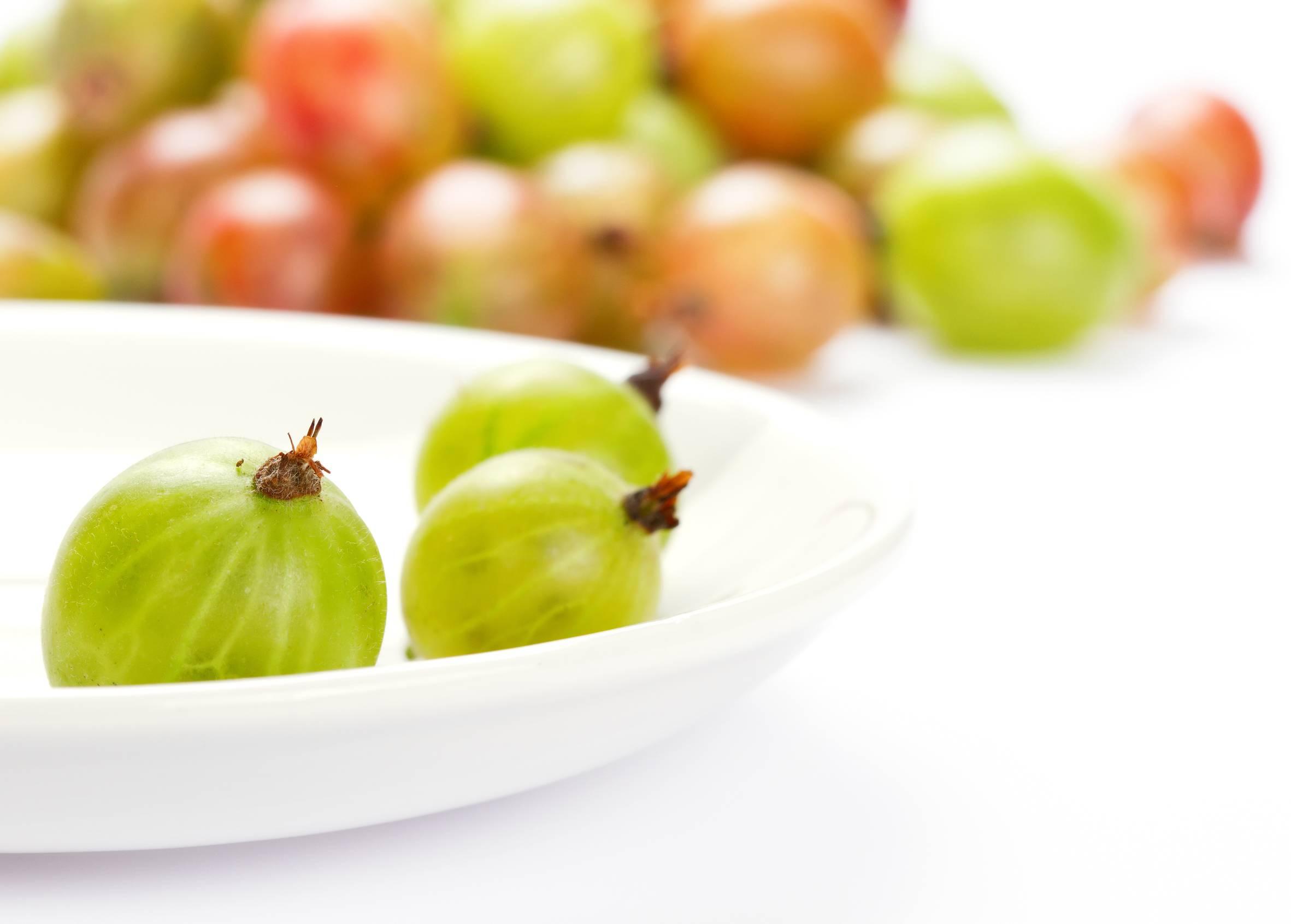 Польза и вред крыжовника для организма: 10 самых важных для здоровья свойств