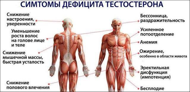 Причины, симптомы и методы лечения низкого тестостерона у мужчин