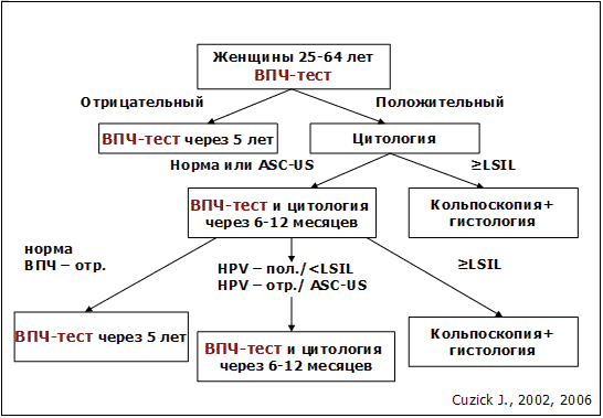Впч типы у женщин и мужчин: 16, 18, 31, 51, 56, 39, онкогенные, высокоонкогенные. лечение