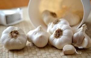 Лечение папилломы в домашних условиях чесноком