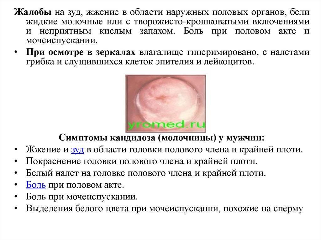 Болит член: причины и методики лечения
