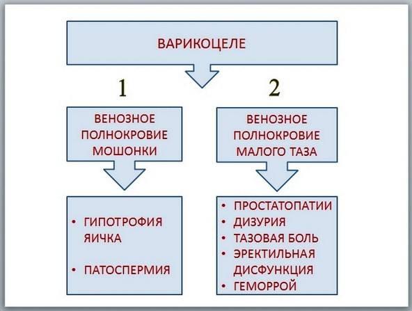 Патоспермия и патозооспермия