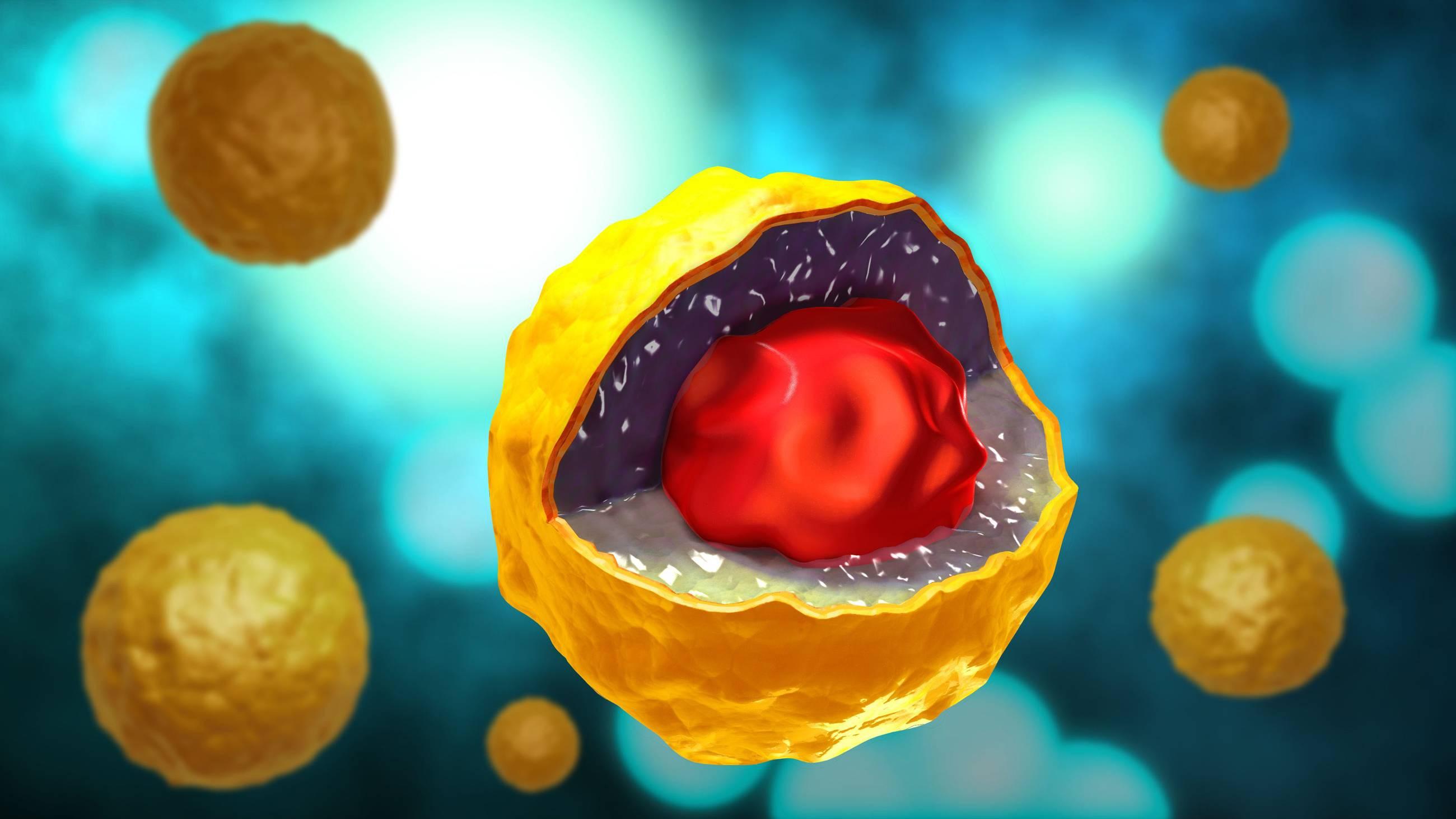 Хламидия трахоматис: признаки и диагностика у мужчин
