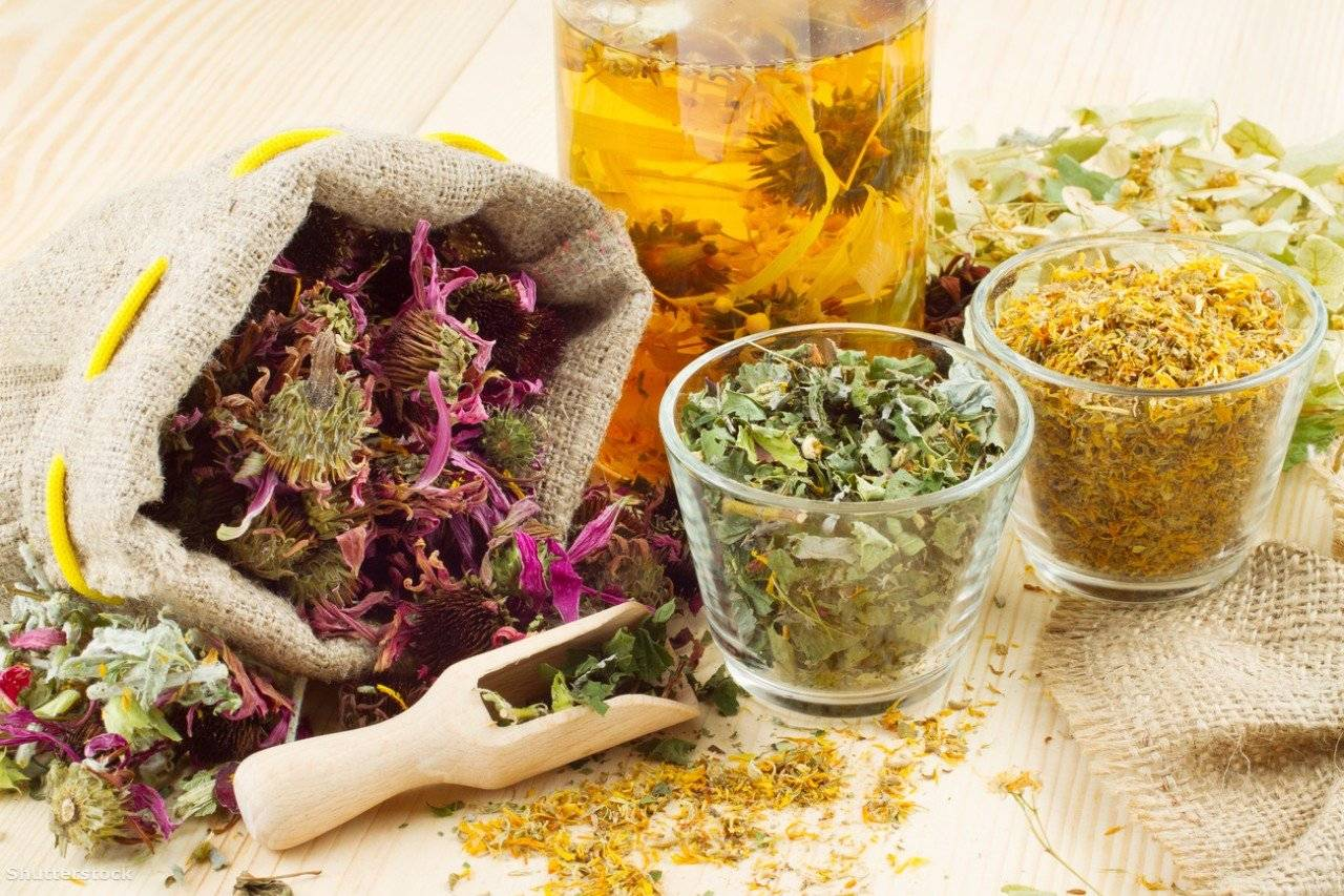 Самые эффективные рецепты лечения простатита травами