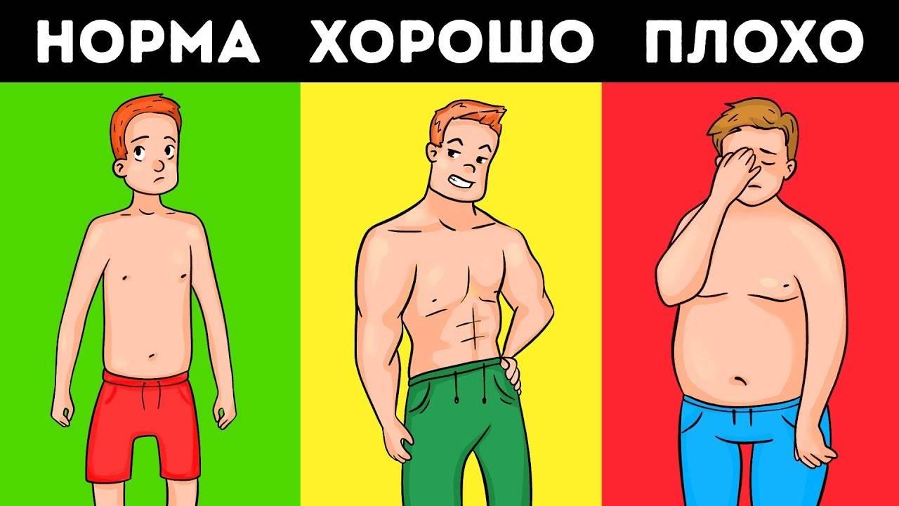 Эстроген у мужчин: норма, симптомы повышения и способы уменьшения уровня