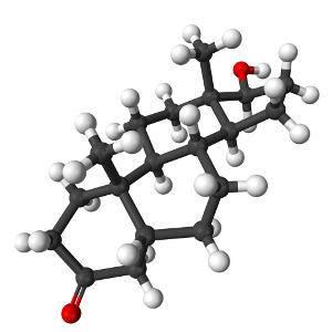 Дигидротестостерон в мужском организме