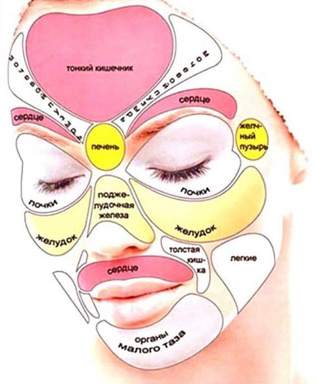Прыщи на лице у женщин. за какие органы отвечают и как их лечить