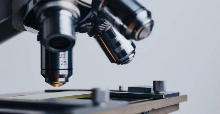 Какой анализ поможет определить насыщенность эстрогенов?