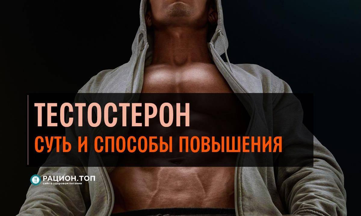 Как тестостерон влияет на мужскую потенцию: как усилить выработку гормона