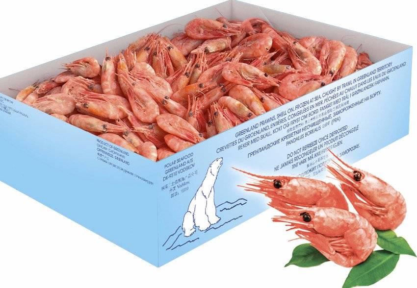 Креветки: полезные и вредные свойства для организма мужчин