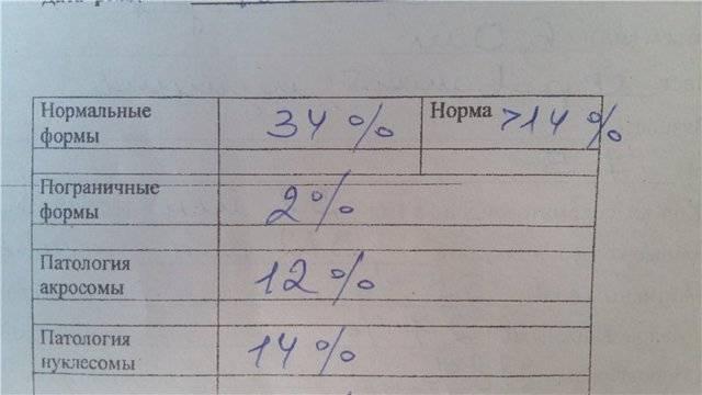 Спермограмма с морфологией по крюгеру: норма и расшифровка анализа