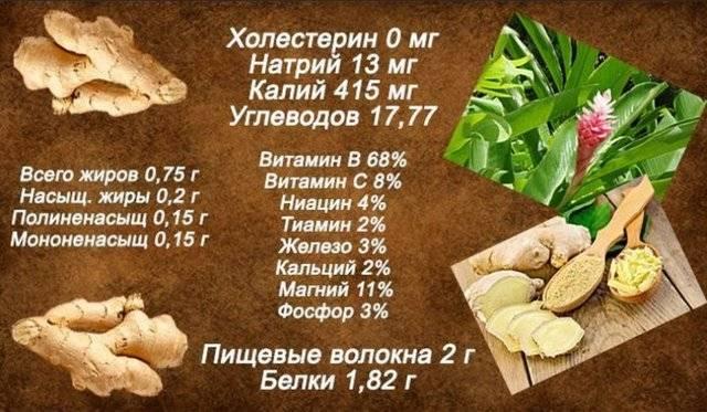 Имбирь: полезные свойства и противопоказания. рецепты для здоровья и похудения