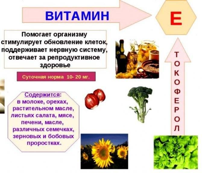 Для чего нужен токоферол? витамин е для мужчин: для чего полезен?