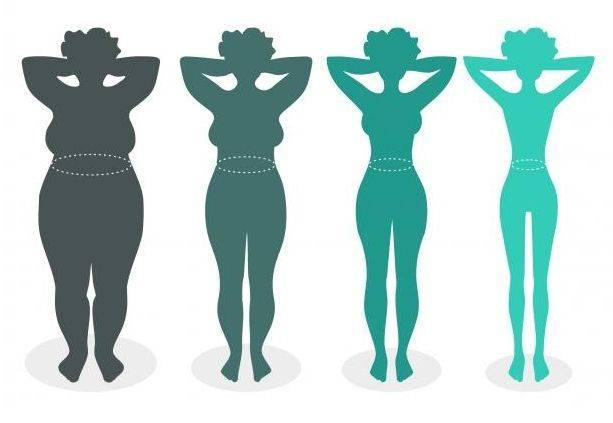Реальные способы, как женщине быстро похудеть в области живота в домашних условиях