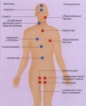 Методы понижения пролактина у женщин: препараты, народные рецепты