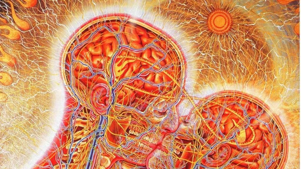 Андрогены: роль в организме мужчины, лечение избытка и недостатка гормонов