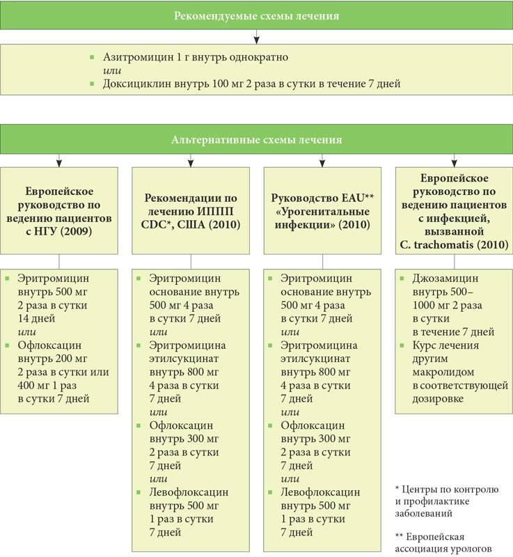 Лечение уреаплазмы у мужчин