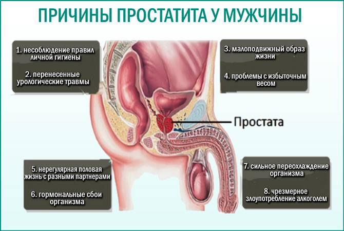 Форум простатит симптомы и лечение когда после лечения простатита можно планировать беременность