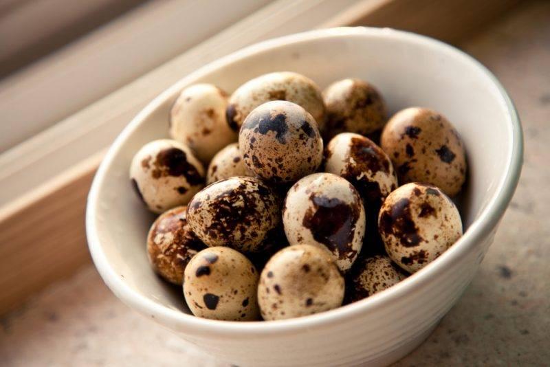 Перепелиные яйца: калорийность, польза и вред продукта, употребление при диетическом питании