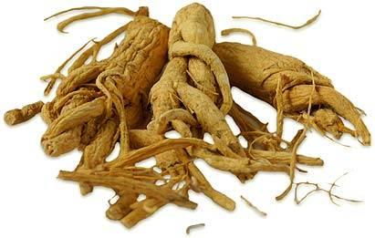 Применение травы и корня женьшеня, свойства, польза и вред