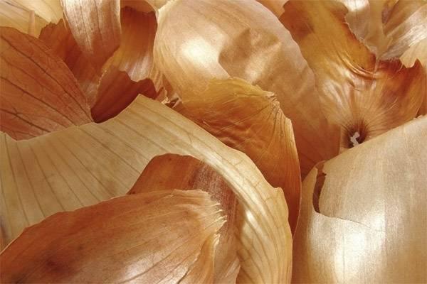 Лечение простатита луковой шелухой в домашних условиях