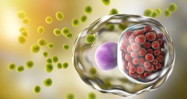 Препараты для лечения хламидиоза у мужчин