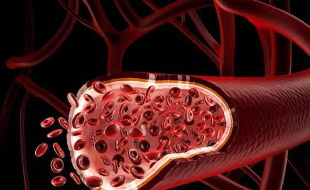 Сколько времени живет вирус вич вне организма