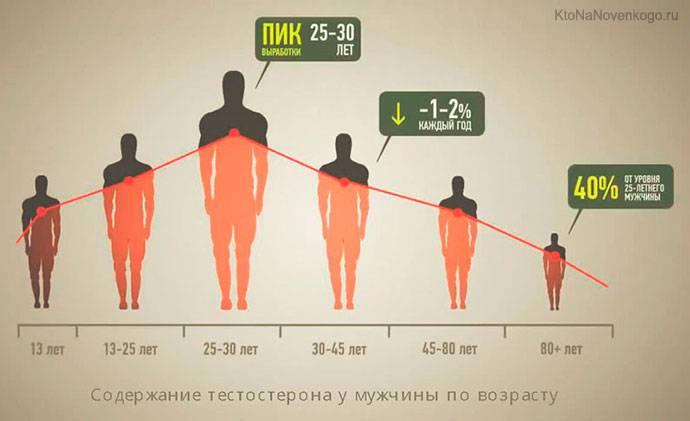 Определяем уровень тестостерона в домашних условиях
