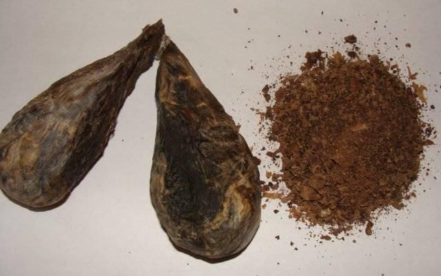 Помогает ли бобровая струя от импотенции
