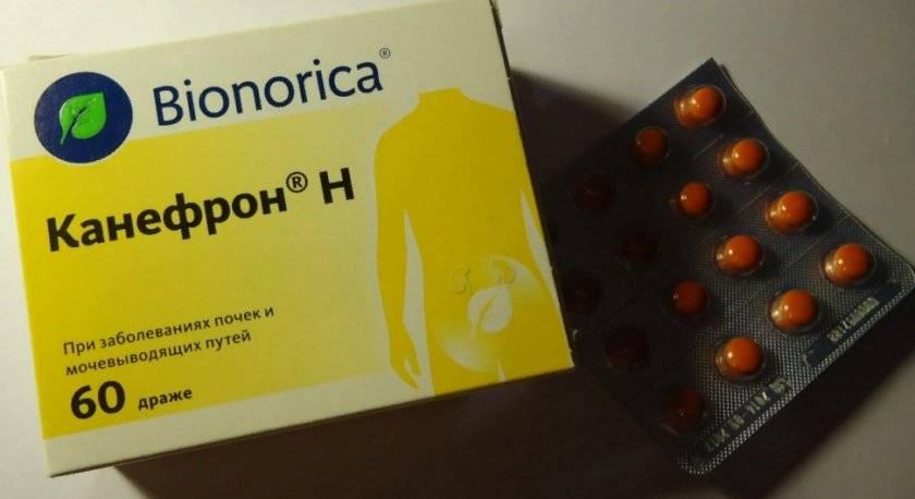 Канефрон (canephron) капли для детей. инструкция по применению, цена, отзывы