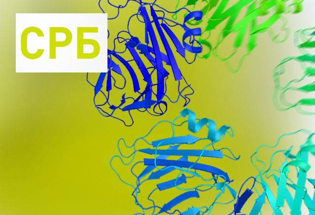 Почему белок в моче повышен
