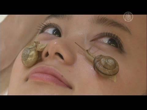 Улитки помогут избавиться от морщин на лице: хитрости и секреты улиткотерапии
