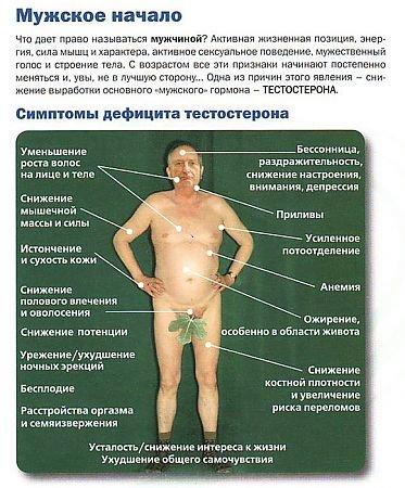 Низкий тестостерон у мужчин: симптомы, причины и лечение
