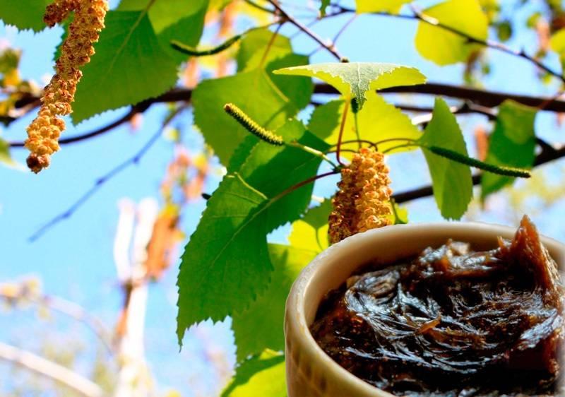 От чего помогает мазь вишневского и как правильно применять вишневского линимент