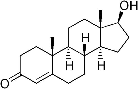 Дигидротестостерон у мужчин