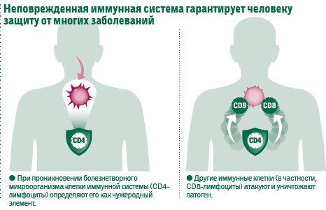 Иммуномодуляторы при впч: список препаратов и нюансы их применения