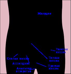 Папилломы в кишечнике