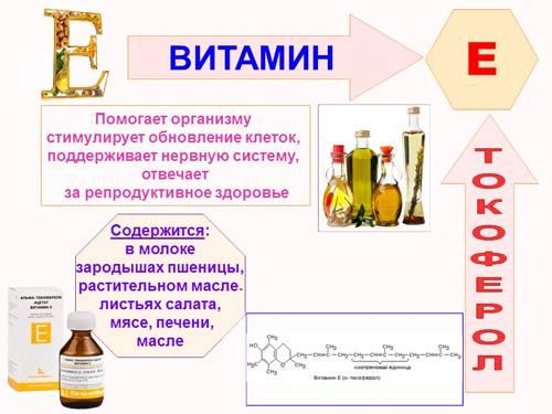 Витамин е для мужчин: польза, зачем нужен и источники потребления