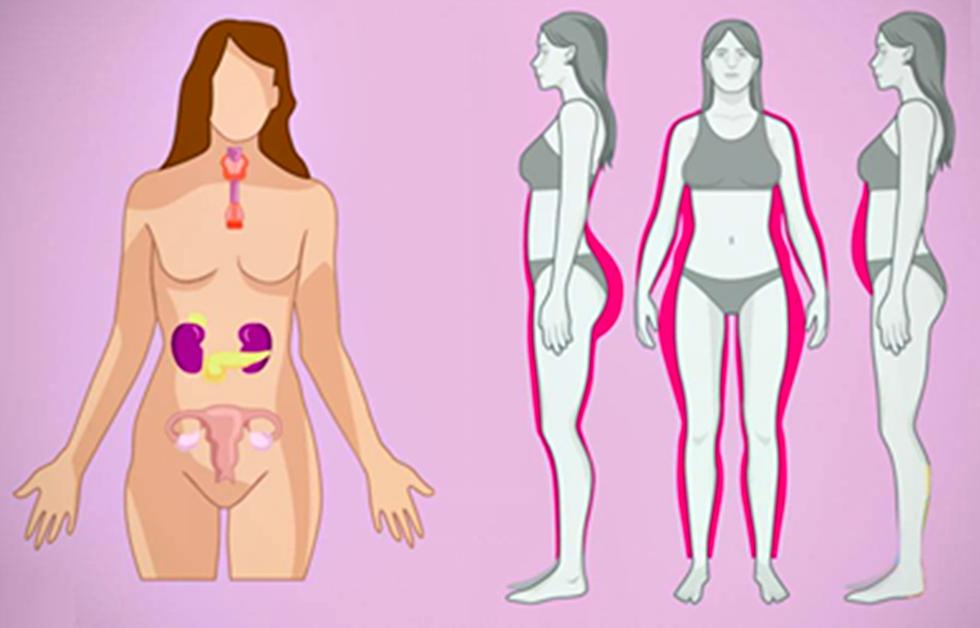 Что следует знать о гормональном сбое