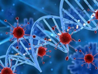 Хламидиоз: описание, пути передачи, симптомы и лечение