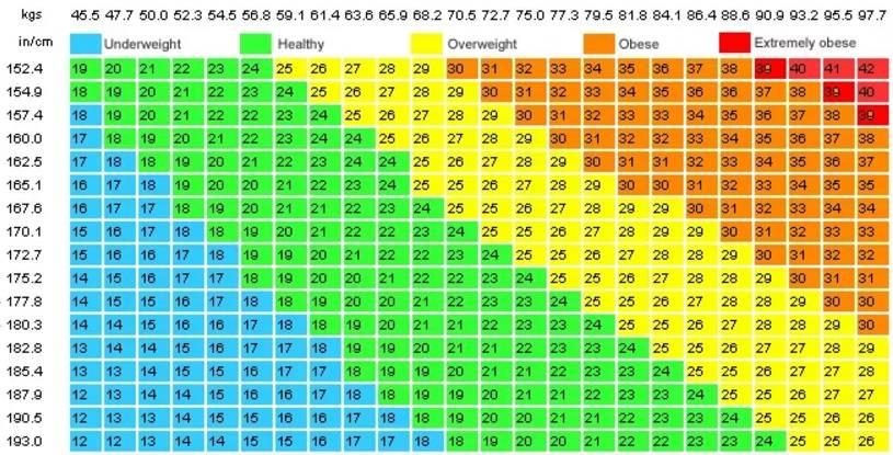Как быстро и точно рассчитать свой правильный вес