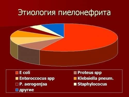 Последствия кольпита при беременности