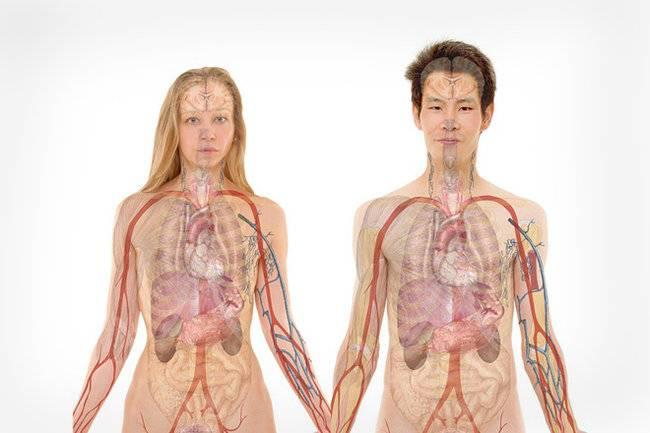Инфекционные заболевания мочеполовой системы у мужчин
